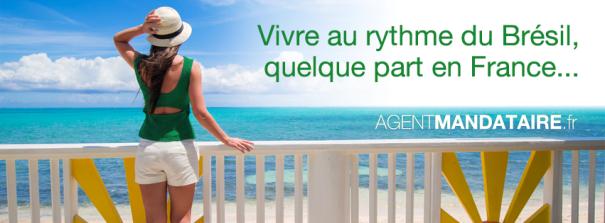 AgentMandataire-fr_FB-Juin2014